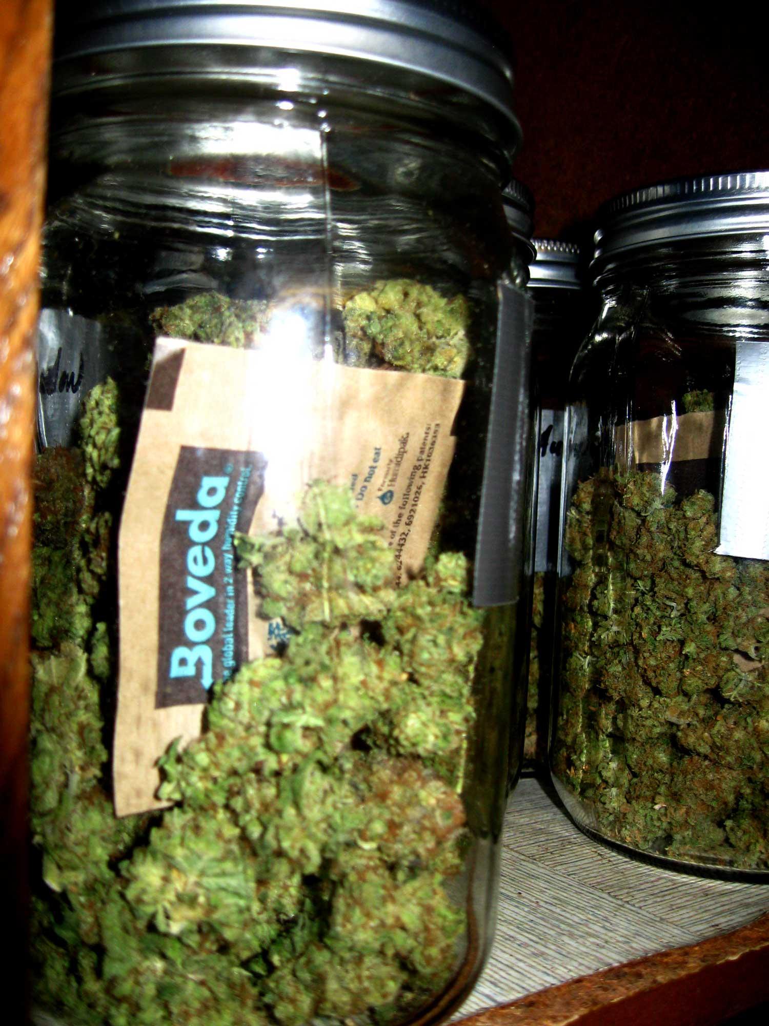 How To Dry Amp Cure Marijuana Step By Step Tutorial Grow