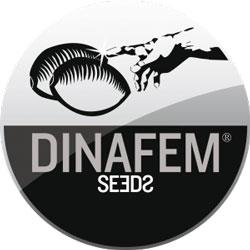 Dinafem cannabis seeds logo