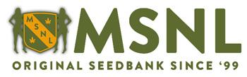 Visit the MSNL Seed Banks website (Original Cannabis Seedbank since '99)
