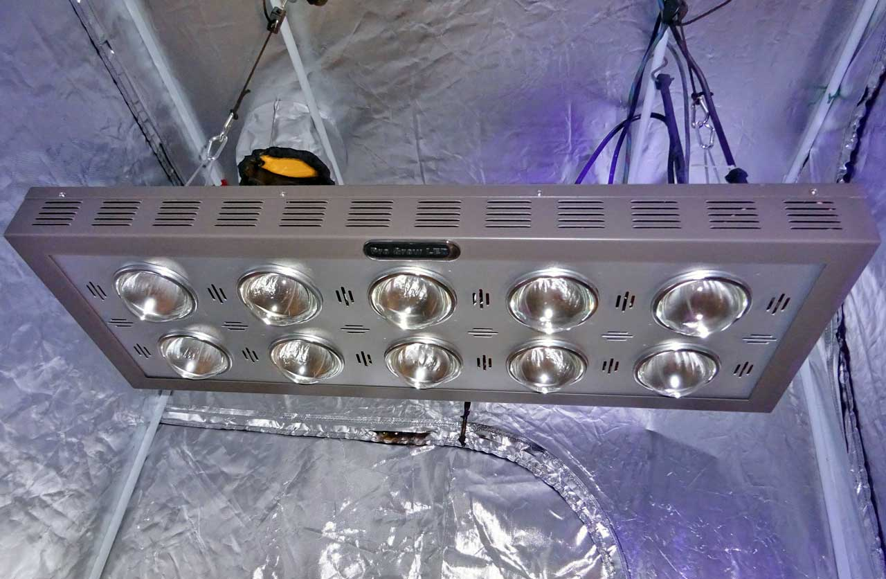5 barriers to led grow light domination hps vs led grow lights led grow lights like this pro grow 750 come in all shapes and parisarafo Image collections