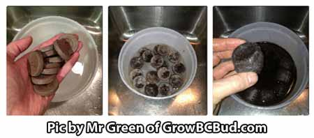 Let the Jiffy pellets soak in warm water until they expand. At that point they will be ready for seed germination!