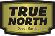 True North Seeds is one of the few well-tested seed banks located in North America. Located in Canada, the shipments from True North Cannabis Seeds often come more quickly than seeds shipped from overseas.