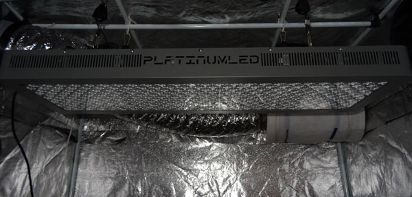 A PlatinumLED P900 (557W) ready to get down to business!