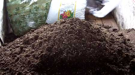 What cannabis super soil pile looks like after adding second bag of Biobizz Light-Mix soil