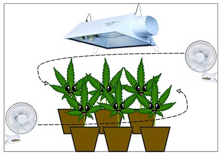 Air circulation exhaust tutorial grow weed easy for Home air circulation