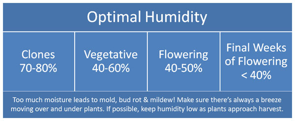 Optimal cannabis humidity levels chart for clones, vegetative and flowering