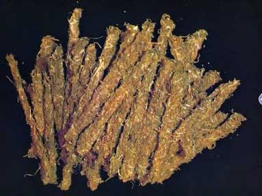 "Example of ""Thai Stick"" Buds From 1976 - older strains like this one usually have higher levels of CBD than most modern strains"