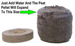 Jiffy & Compressed Peat Pellets work great for cloning cannabis