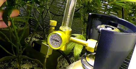 Compressed CO2 tank in a cannabis grow room