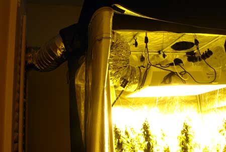 Example of setting up a full exhaust system with ducting connecting the grow light to the fan