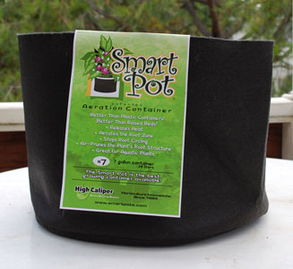 "Fabric pots or ""Smart Pots"" are great for growing cannabis"