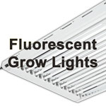 Fluorescent Grow Lights like the T5 can be a low heat, low electricity option for growing marijuana