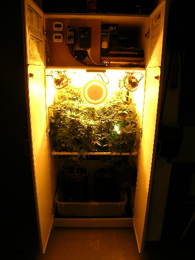 Building An Ultra Stealthy Grow Cabinet Grow Weed Easy