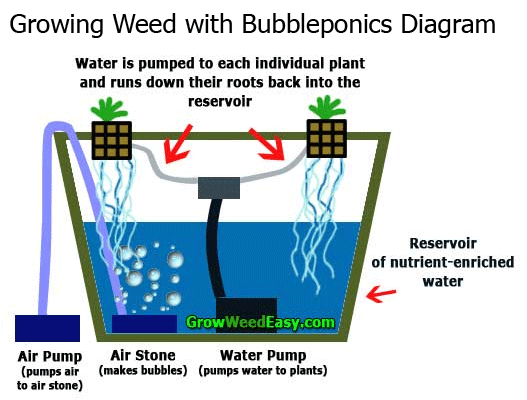 Grow weed with bubbleponics diagram