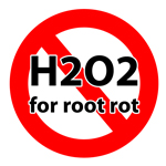 Don't use H2O2 for cannabis root rot - it's temporarily effective at best