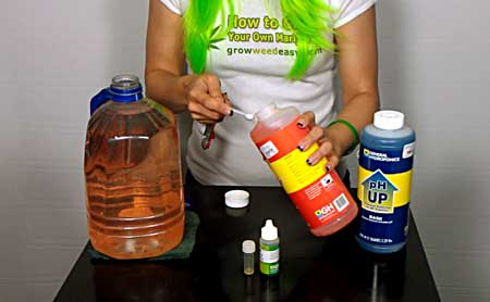 How to check and adjust the pH of your water when growing weed video