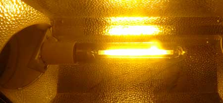 HPS bulb inside a hood reflector - they emit an incredibly bright yellow light