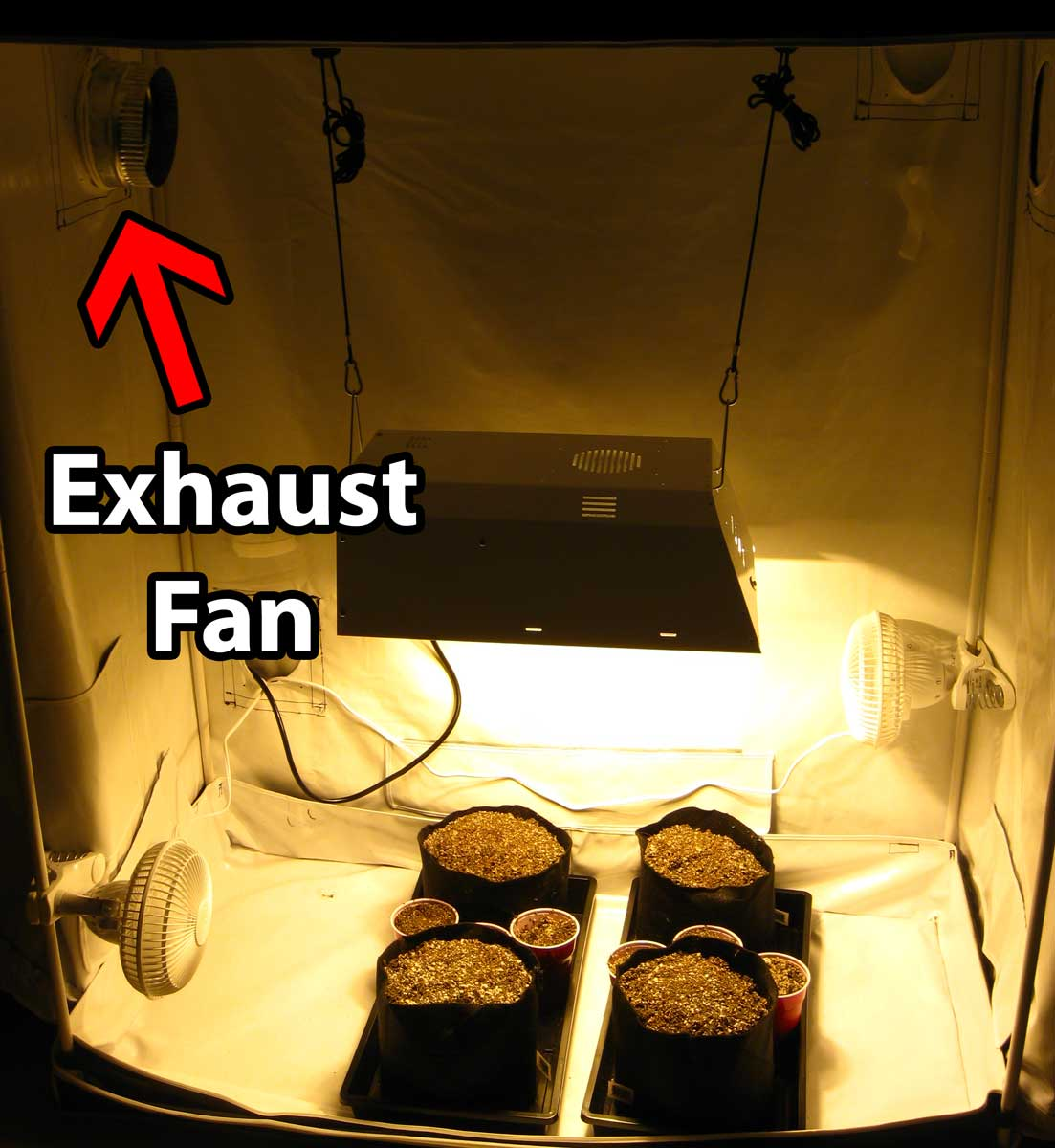 You just need an exhaust fan and a grow light to start growing cannabis in a & How to Set Up Grow Tents for Cannabis | Grow Weed Easy