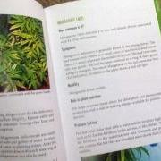 Marijuana growing Books