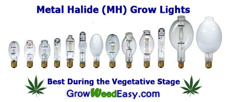 Metal Halide (MH) Grow Lights for Growing Marijuana