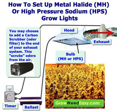 How to set up MH or HPS Grow Lights - a quick diagram showing how an HID light needs to be exhausted if it gets too hot