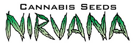 Nirvana sells cannabis seeds online to the United State and the rest of the world! They have some of the most consistent strains and best genetics! At GWE we use a lot of Nirvana strains :)