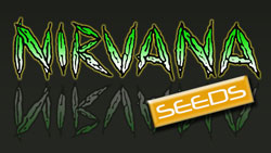 Nirvana cannabis seeds logo