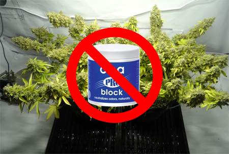 Ona gel should never go in your grow tent or share air with your plants!