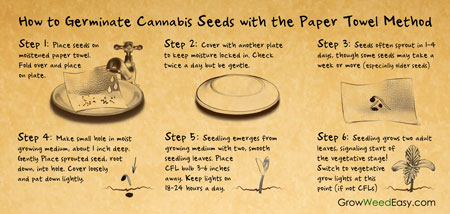 Paper towel method germination cheat sheet!