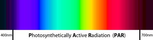Photosynthetically Active Radiation (known as PAR) is a measure of light in the 400-700nm range.