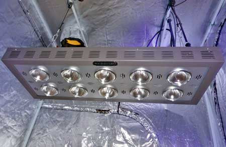 LED grow lights (like this Pro-Grow 750) come in all shapes and sizes