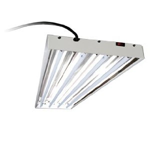 t5 fluorescent grow light system for growing cannabis - T5 Light Fixtures