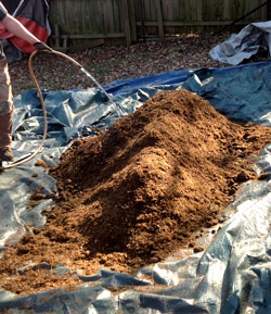 Add water to cannabis super soil pile to start the microbial processes