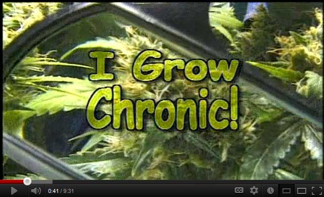 Watch this step-by-step video series on how to grow marijuana indoors