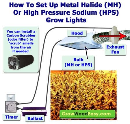 mh hps grow light setup diagram simple sm learn how to grow cannabis indoors grow weed easy