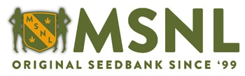 Visit the MSNL Seed Banks website (Original Cannabis Seedbank since '99)