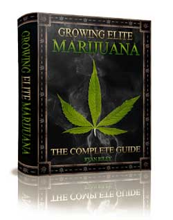Growing Elite Marijuana by Ryan Riley