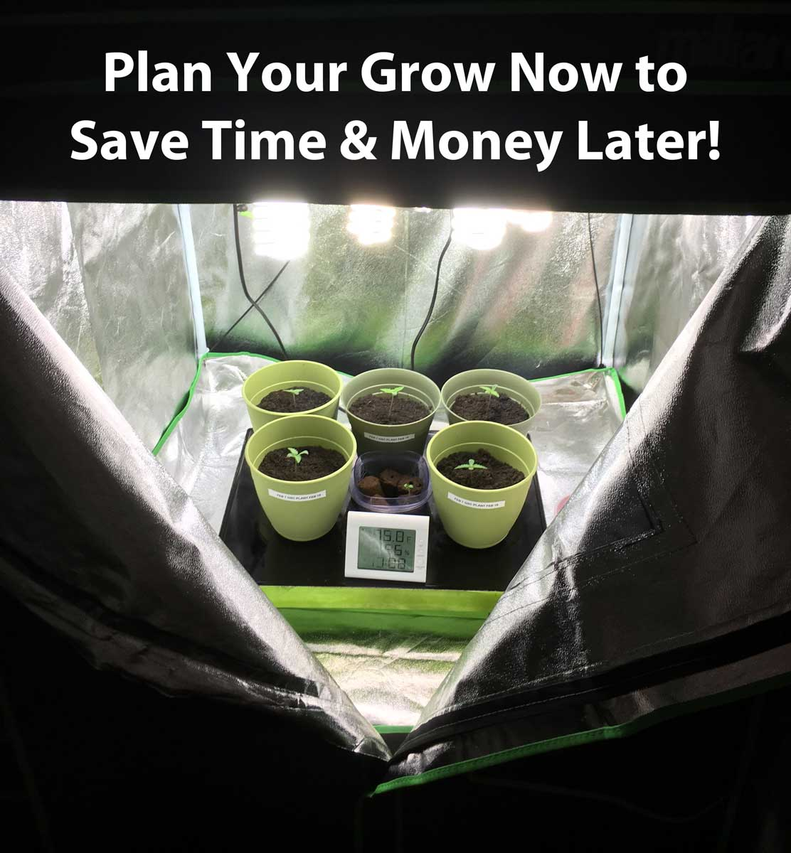 which room in the house is best for growing weed grow weed easy