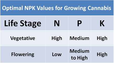 Chart diagram showing the optimal NPK nutrient ratios for growing cannabis or medical marijuana