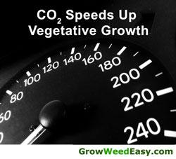 CO2 Speeds of Vegetative Growth