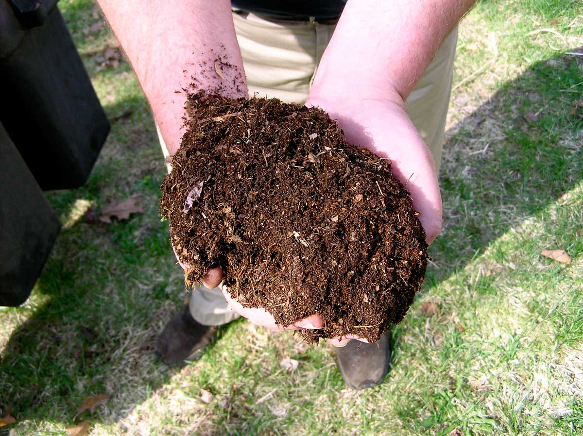 You Can Grow Using Organic Soil With Liquid Nutrients To Get Some Of The Benefits Both