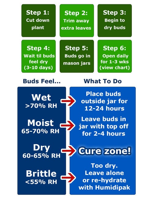 How to cure marijuana overview quick tutorial - This is a cheat sheet harvest / drying / curing diagram