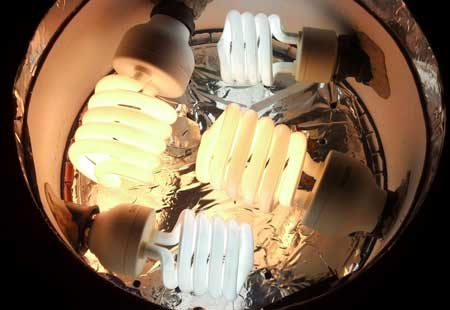 CFL bulbs in a space bucket top - click for closeup!