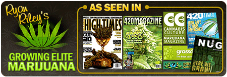 Ryan Riley's Growing Elite Marijuana - For Advanced Growers Only!