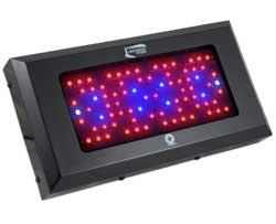 Blackstar 240 Watt LED Grow Light works best for marijuana when combined with an HPS grow light