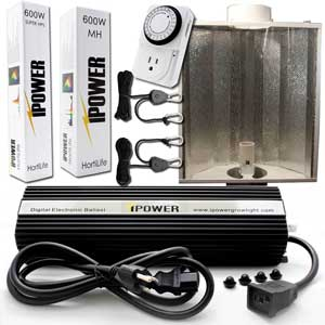 Air-cooled 400W, 600W or 1000W HID Grow Lights (HPS and MH) for growing weed