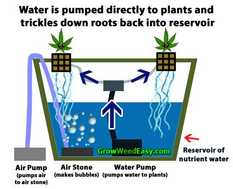 How to grow cannabis with bubbleponics - diagram