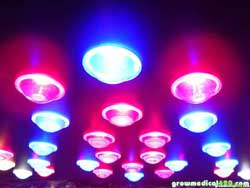 LED grow light called Pro-Grow X5 - Full Spectra & 5 watt chips
