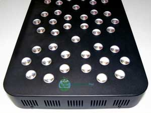 Click here to learn more about the Pro-Grow X5-300 LED grow light for growing cannabis
