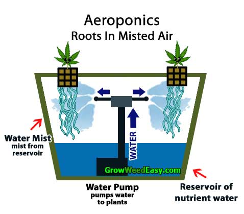 Growing cannabis with Aeroponics (plants get nutrients via misted air from reservoir) hydroponics diagram